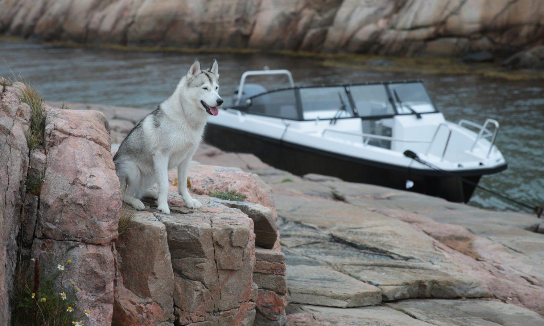 Aluminium-boat-Husky-R7_8